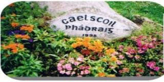 Gaelscoil Phadraig (320 x 160)